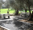 Accessible Picnic areas