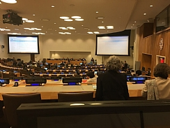 meeting of UN's Economic and social Committee