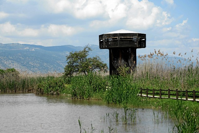 the Observation tower at the Hula Nature Reserve